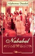 Mai multe detalii despre Nababul ...