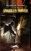 Mai multe detalii despre Angelus Novus ...