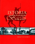 Mai multe detalii despre Istoria municipiului Bacau ...
