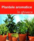 Mai multe detalii despre Plantele aromatice in ghivece ...