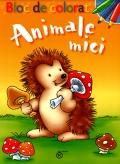 Mai multe detalii despre Animale mici ...